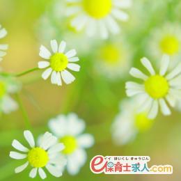 保育士*大阪市住之江公園*月給17.7万円~!初年度賞与2.8ヶ月!