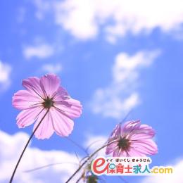 担任補助の保育士時給1,320円|土日祝休×フルタイムで時間固定もOK|大阪市北区同心