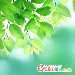 担当補助の保育士|月~金フルタイム|寺院系|複数担任制|堺東