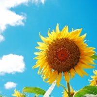 尼崎「立花」◆時給1,320円*働き方など色々相談できます★