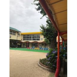 阪神千船駅近|幼稚園教諭|3歳児担当|月~金×9時~4hのお仕事